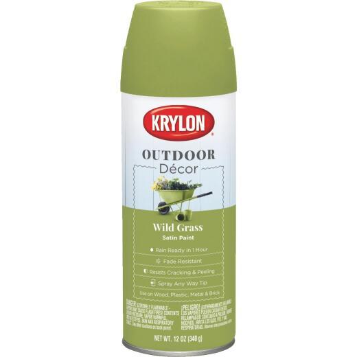 Krylon Outdoor Decor 12 Oz Satin Alkyd Spray Paint, Wild Grass